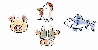タンパク質 動物性 イラストや に対する画像結果